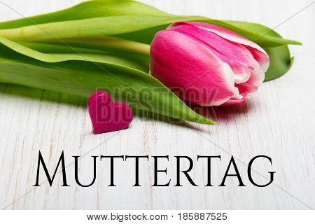 German Mother's day card with word Muttertag (Mother's day) tulip and hearts on white wooden background.