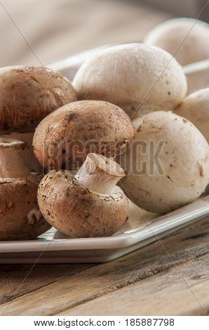 champignon mushroom close up on wooden background