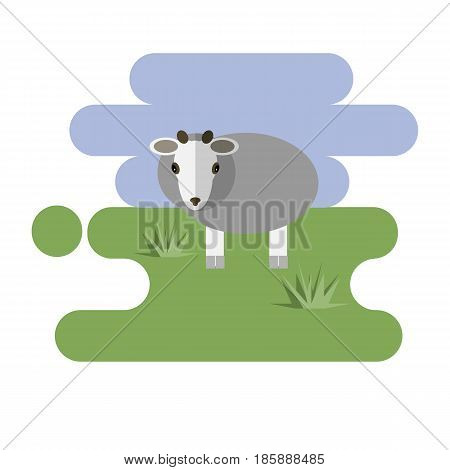 Flat cartoon white sheep icon on blue and green background. Vector illustration