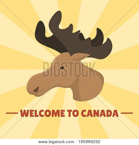 Moose head mammal trophy wildlife antler north horn animal wilderness hunt reindeer zoo bull vector illustration. Canada big hunting wilderness emblem