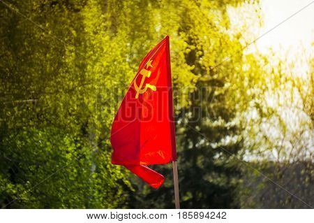 The Flag Of The Soviet Union Develops On The Background Of Green Trees.