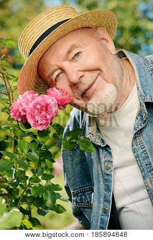 Portrait of a handsome senior man growing roses in his garden. Gardening and flori culture. Happy retirement.