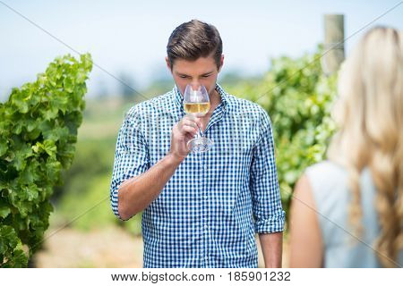 Young man drinking white wine at vineyard