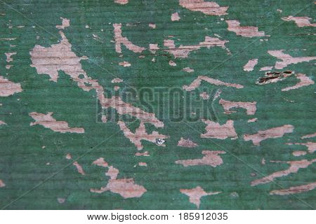 texture background shabby old green wood boards