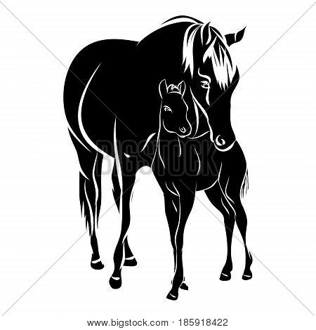 Mare with foal vector silhouette illustration 0