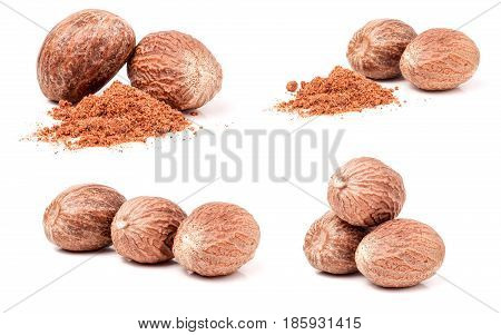 four nutmeg and powder isolated on white background. Set or collection.