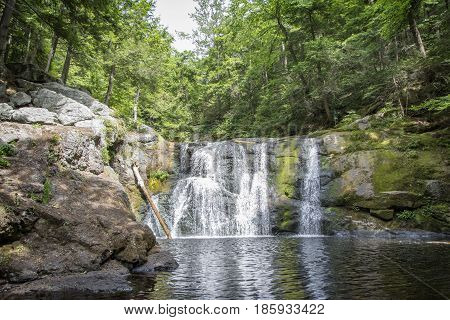Forest waterfalls and a lagoon in New England