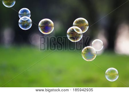background with lots of bright iridescent soap bubble with reflections flying over on a bright summer meadow on a Sunny day