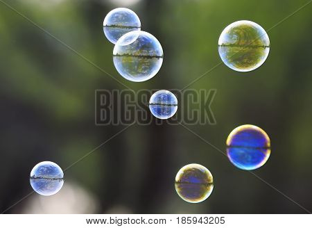 beautiful festive background with rainbow bubbles with the reflection of the sky on green grass bubble