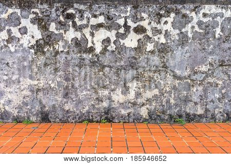 Close up of Mildewed walls and crack wall