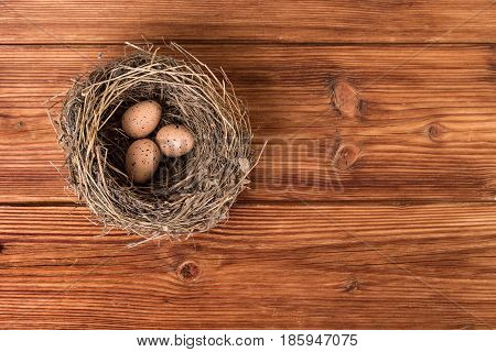 Bird nest on old wooden background. Top view copy space