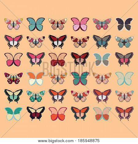 Collection of thirty six colorful hand drawn butterflies orange background vector illustration