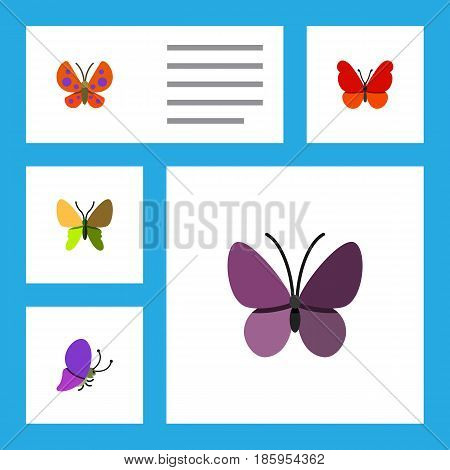 Flat Moth Set Of Beauty Fly, Moth, Violet Wing And Other Vector Objects. Also Includes Insect, Milkweed, Butterfly Elements.