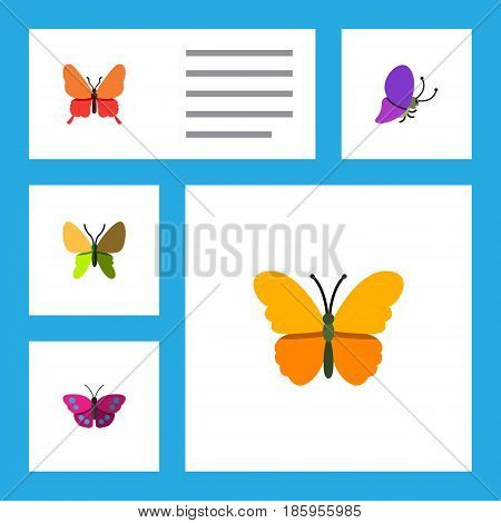 Flat Moth Set Of Danaus Plexippus, Beauty Fly, Archippus And Other Vector Objects. Also Includes Archippus, Moth, Monarch Elements.