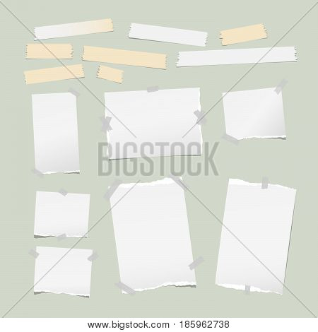 Ripped white note, notebook, copybook paper strips, sticky, adhesive tape, stuck light green background