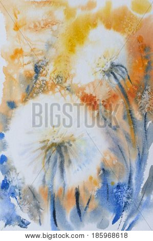 Dandelions on a field. Nature background. Picture created with watercolors.