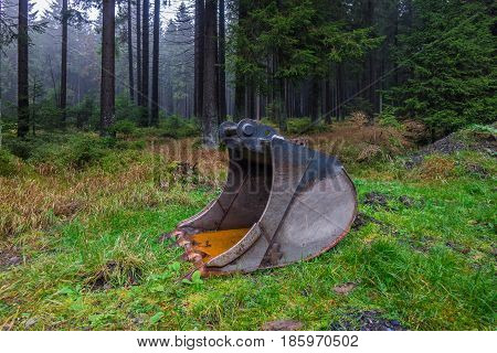 The Excavator Bucket In A Autumn Forest