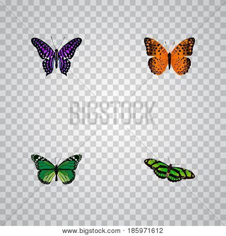 Realistic Green Peacock, Birdwing, Danaus Plexippus And Other Vector Elements. Set Of Butterfly Realistic Symbols Also Includes Green, Monarch, Purple Objects.