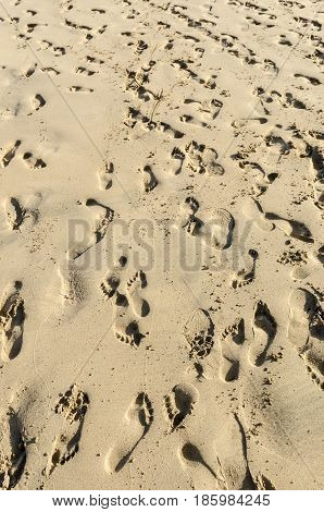 People Leave Tracks On Sand Beach El Cotillo, Fuerteventura, Canary Islands, Spain