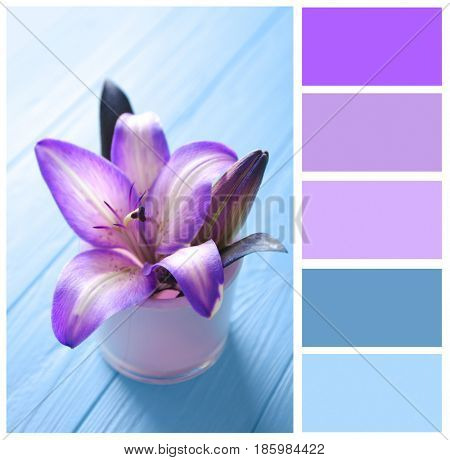 Lilac color matching and beautiful lilies on wooden background