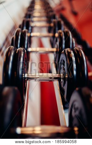 Sports equipment dumbbell rests in a row in gym