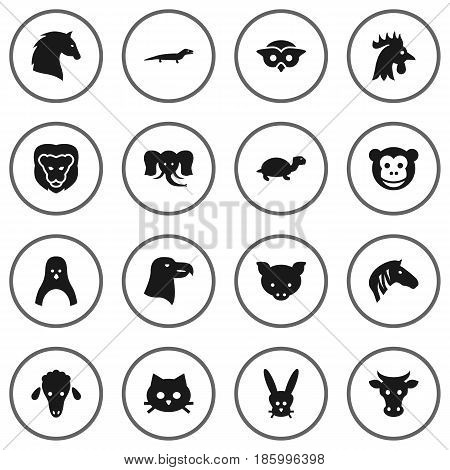 Set Of 16 Beast Icons Set.Collection Of Tortoise, Pussy, Horse And Other Elements.