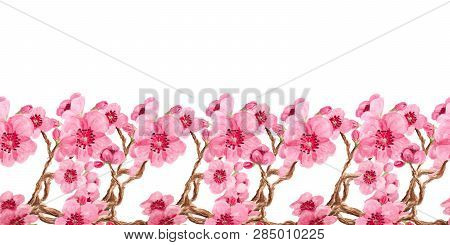 Horizontal Seamless Pattern With Watercolor Image Of Sakura Blossom. Good Design For Border Or Decor