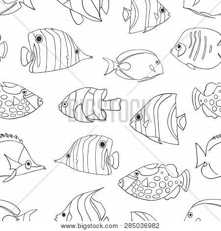 Tropical Fish Black On White Seamless Vector Pattern. Swimming Butterflyfish, Clown Triggerfish, Dam