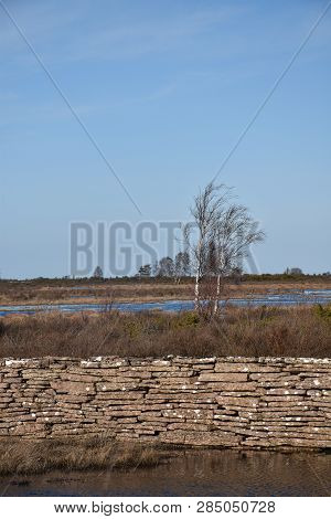 Detail Of An Old Stone Wall By Springtime In A Flooded Landscape At The Swedish Island Oland