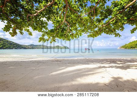 Beautiful Amazing Incredible Tropical Beach, White Sand, Blue Sky With Clouds And Reflection Of Tree