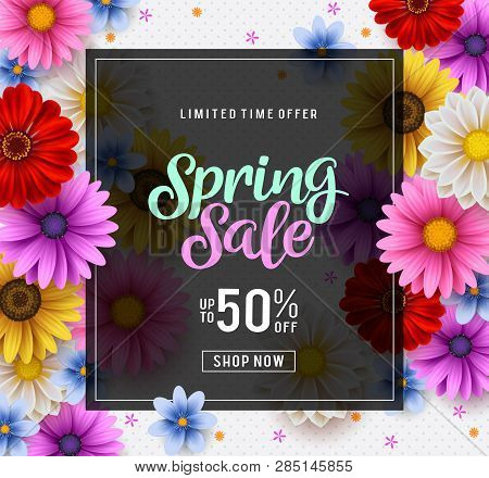 Spring Sale Vector Banner Template With Colorful Chrysanthemum And Zinnia Flowers Elements In The Ba