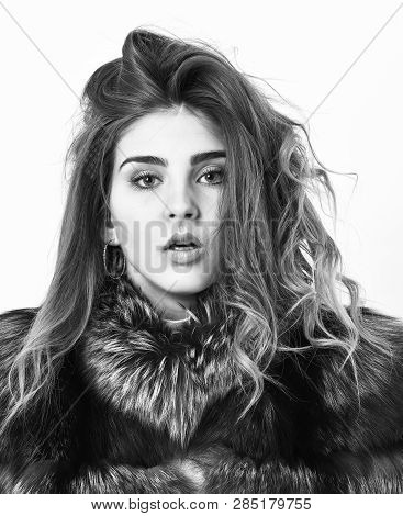 Girl Fur Coat Posing With Hairstyle On White Background Close Up. Prevent Winter Hair Damage. Woman