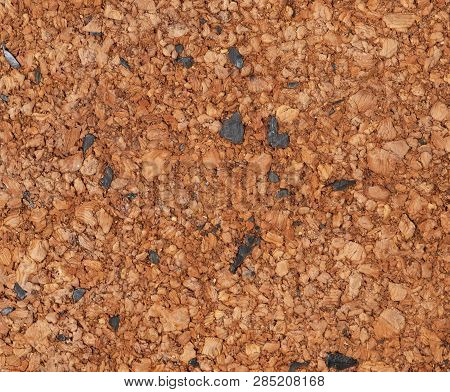 Old Corkwood Texture. Background For Your Design