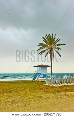 Beach with palm tree and life guard tower in low season, Larnaca, Cyprus poster