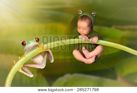 7 days old little newborn baby dressed as a green tree frog hanging on a twig together with a real red eyed tree frog