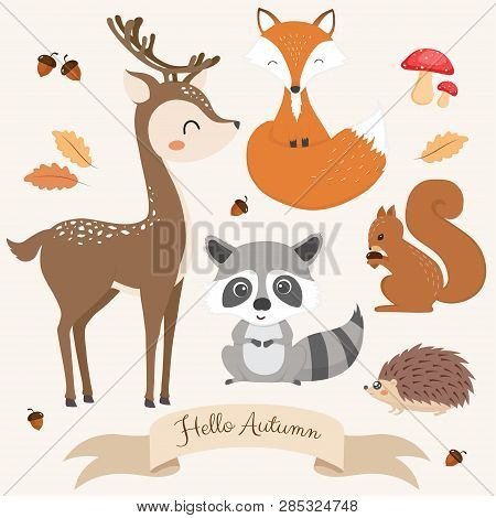 Set Of Cute Woodland Animals. Vector Illustration
