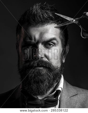 Male In Barbershop, Haircut, Shaving, Mans Haircut In Barber Shop Portrait Of Stylish Beard Man, Sci