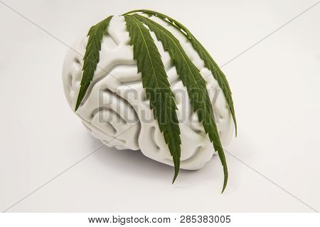 The Figure Of The Human Brain, Covered With A Green Leaf On Top Of Medical Cannabis. The Idea For Th