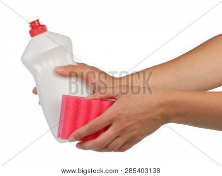 The Concept Of Homework. Female Hands Holding A Sponge And Dishwashing Detergent Isolated On White B