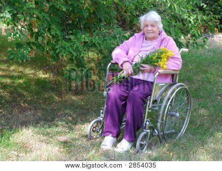 Senior In A Garden