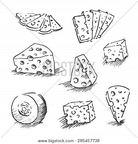 Cheese Isolated On A White Background, Hand Drawn Cheese Outline Vector Illustration. Cheese Sketch,
