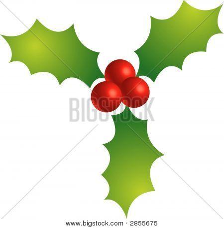 Holly Berries (Replacing: 2412447)