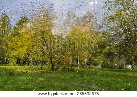 Bright, Colorful Autumn Blurred Landscape In City Park With Wet Foliage After Rain Through  Wet Wind