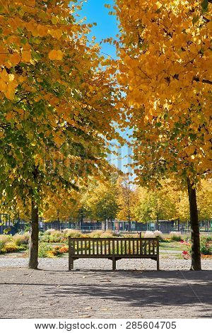 Park Bench In An Autumnal Park Near Magdeburg