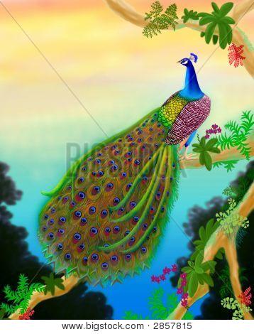 Male Green Peacock In Tree