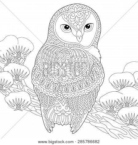 Coloring Page. Coloring Book. Anti Stress Colouring Picture With Owl. Freehand Sketch Drawing With D
