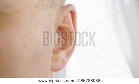 Adult Male Ear Close Up. Man Moving His Ear. Otolaryngology And Hearing Health