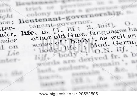 Life; Definition In English Dictionary.