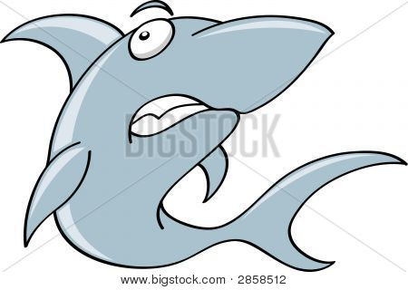 a shark illustration isolated on a white background poster