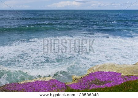 View Of  The Pacific Ocean From La Jolla, California Coast.